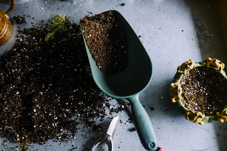 What makes the soil healthy and suitable for plants