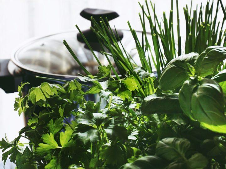 Indian Herbs for Kitchen garden