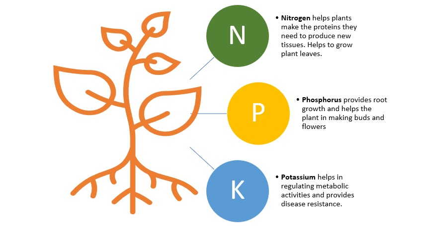 Major nutrients requirement for plants to grow well
