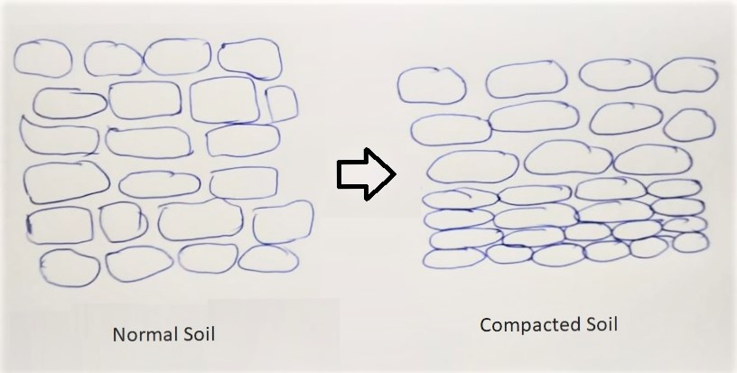 What is soil compaction and how to avoid it