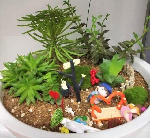 Miniature Garden - Creative Gardening