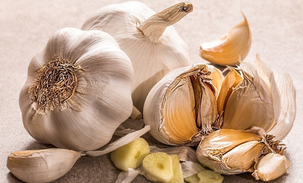 How to grow and care for Garlic at home:Proven medicinal properties