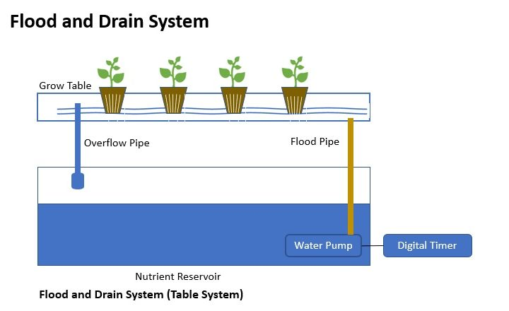Flood and Drain System