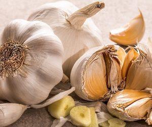 Garlic, Growing Garlic at Home