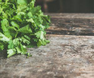 Indian Herbs, Organic Gardening